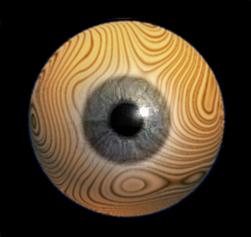 woodeye.jpg